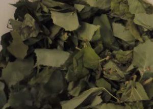 Сухие листья