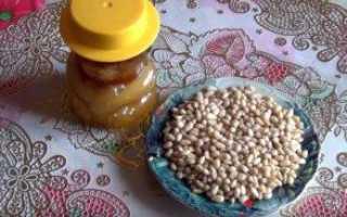 В чем польза кедровых орехов с медом