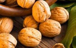 История названия «грецкий орех»