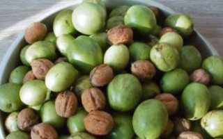 Как размножается грецкий орех