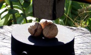 Три грецких ореха и молоток