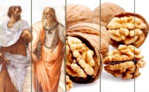 Древние греки и грецкие орехи