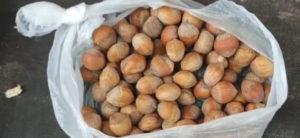 Медвежьи орехи в пакете