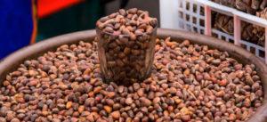 Орехи кедра в стакане