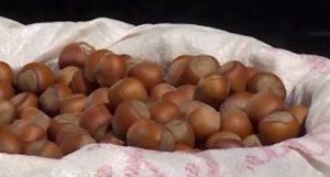 орехи на ткани