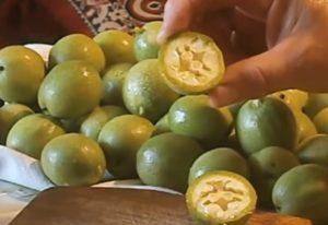 зеленые орехи в разрезе